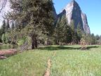El Capitan Meadows